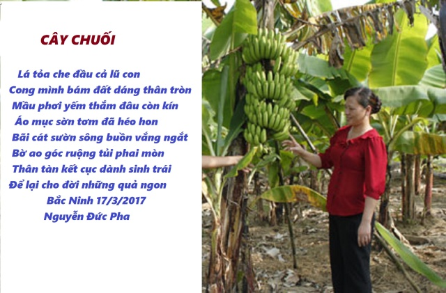 chuoi(3)